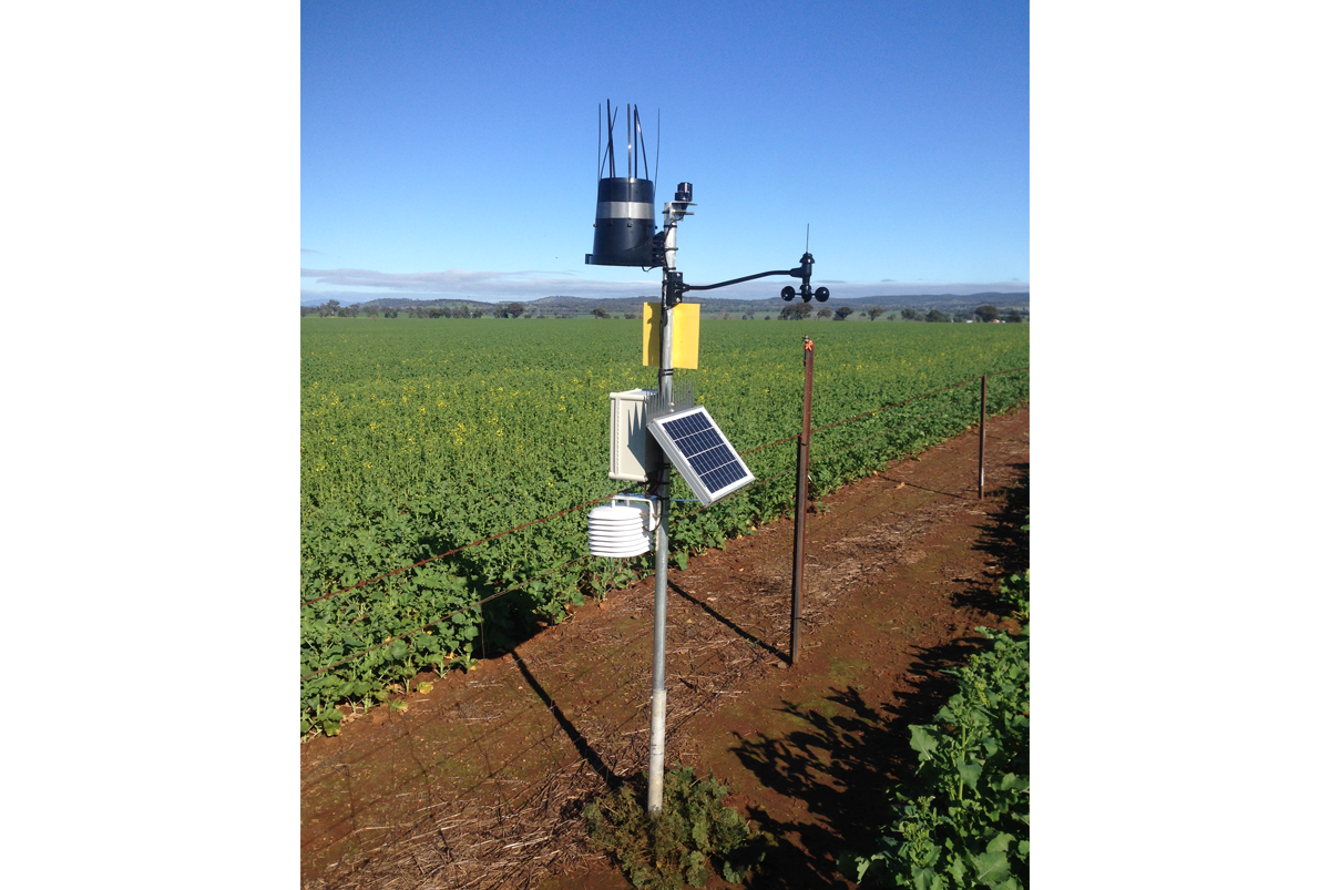 crop and pasture monitoring